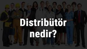 Distribütör nedir, ne iş yapar ve nasıl olunur Distribütör olma şartları, maaşları ve iş imkanları