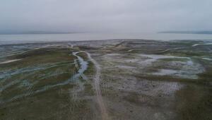 Son dakika... Sular çekildi, Büyükçekmece Gölü bu hale geldi