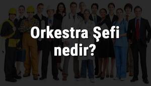 Orkestra Şefi nedir, ne iş yapar ve nasıl olunur Orkestra Şefi olma şartları, maaşları ve iş imkanları