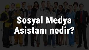 Sosyal Medya Asistanı nedir, ne iş yapar ve nasıl olunur Sosyal Medya Asistanı olma şartları, maaşları ve iş imkanları