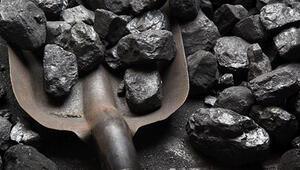 Dünya sigorta sektörü 'kömürsüz hayat' için harekete geçti