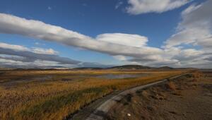 Yüzlerce kuş türünün yaşam alanı: UNESCO adayı Gediz Deltası