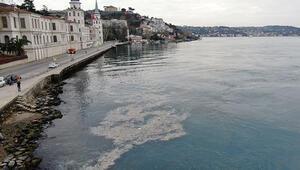 Son dakika haberler: İstanbul Boğazında çöp adaları oluştu