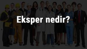 Eksper nedir, ne iş yapar ve nasıl olunur Eksper olma şartları, maaşları ve iş imkanları
