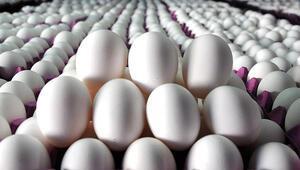 Yumurtada 90 kuruşun üstüne dikkat