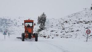 Tuncelide kar yağışı hayatı olumsuz etkiledi