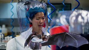 Son dakika haberler: Wuhandaki koronavirüs laboratuvarının başındaki isim Prof. Shi: Ziyarete açığız