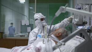 Koronavirüs tedavisinde yeni umut: At serumu