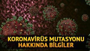 Mutasyon nedir, ne demek Koronavirüs mutasyonu hakkında merak edilenler