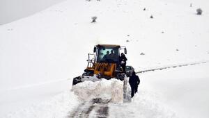 Muş'ta 19 köy yolu kardan kapandı