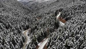 Yedigöller Milli Parkı yolu, kar ve buzlanma nedeniyle ulaşıma kapatıldı