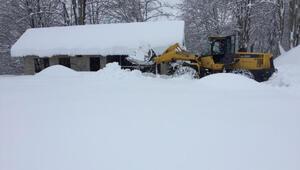 Karadeniz'de kar esareti; kapalı 118 yerleşim yerinin yolunda hummalı çalışma