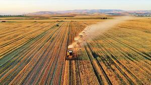 Tarım arazileri dijital ortamda kiralanacak