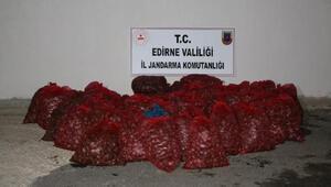 Edirne'de 1 ton kaçak midyeye 101 bin lira ceza