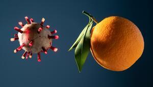 C Vitamini, Mide Kanserini Önlüyor mu