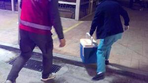 Trabzonda beyin ölümü gerçekleşen hastanın organları umut oldu