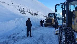 Çığ riski yüzünden kapatılan Van- Bahçesaray yolu, ulaşıma açıldı