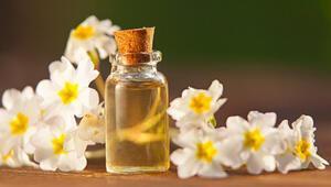 Çuha çiçeğinin faydaları nelerdir Çuha çiçeği yağının vücuda etkileri...