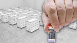 Türkiyenin gözü kulağı burada Çinin koronavirüs aşıları kontrolden sonra depoya yerleştiriliyor