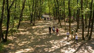 Avrupanın en büyük doğal yaşam parkı 5 milyon ziyaretçiyi ağırladı
