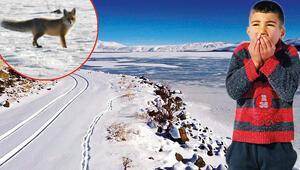 Batıda havalar soğumazken doğuda kar, buz, don...