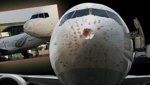 Kuş sürüsüne giren kargo uçağı Atatürk Havalimanına acil iniş yaptı