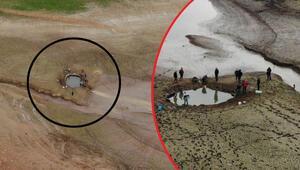 Ömerli Barajındaki yavru balıklar için harekete geçtiler Yürek sızlatan görüntü...