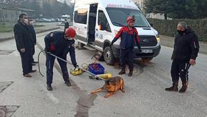 Minibüsün altında kalan köpeği itfaiye kurtardı