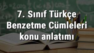 7. Sınıf Türkçe Benzetme Cümleleri konu anlatımı