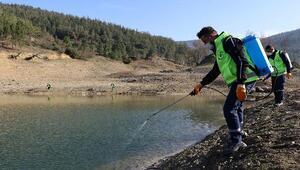 Bursada sulak alanlarda sinekle mücadele için ilaçlama yapılıyor