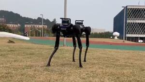 Robot köpek düşünce ayağa kalkmasını öğrendi
