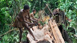 Yıllardır ağaçlarda yaşayan son ilkel kabile... Tüyleri diken diken eden bir geleneğe sahipler