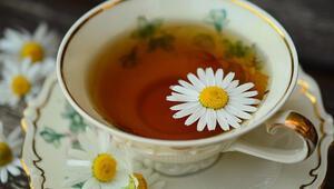 Ağrıları kesiyor, stresi azaltıyor... Papatya çay tam bir şifa kaynağı