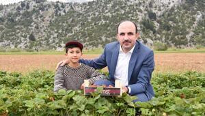 Konya Büyükşehir Belediyesinden 2020de 7 milyon lira fide ve ekipman desteği