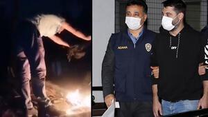 Görüntüler çok tepki çekti, kampanya başlatıldı Gözaltına alındı
