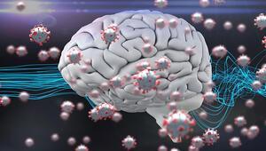 Koronavirüs beyin fonksiyonlarını etkileyebilir