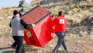 Gönüllülerce Merama, yeni kedi, köpek ve kuş evleri kazandırılıyor
