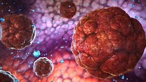 """Uzmanından önemli uyarı: """"Koronavirüs mutasyona uğramaya devam edecek"""""""