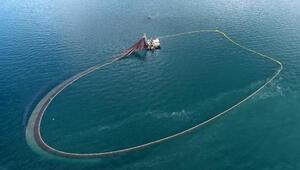 Karadenizde bir ilk Bu da oldu: Balıklar tersine göçe başladı