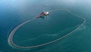 Karadenizde balıklar tersine göçe başladı