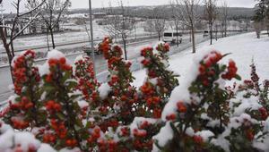 Eskişehir'e ilk kar yağdı, yüksek kesimler beyaza büründü