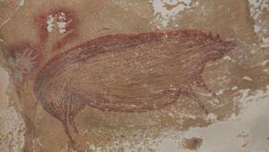 Bilim insanları Endonezya'da dünyanın bilinen en eski mağara resimlerini buldu