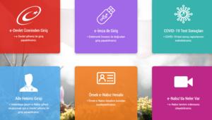 e-Devlet şifresi ile e-Nabız giriş ekranı: e-Nabız giriş nasıl yapılır
