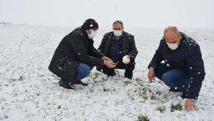 Kar yağışıyla yüzü gülen çiftçi: Emeklerimiz beyaz altın ile buluştu