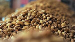 Türkiyeden geçen yıl 100 ülkeye Antep fıstığı ihracatı yapıldı