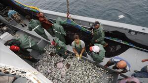 Son dakika...Tarım ve Orman Bakanlığı duyurdu Hamside av yasağı uzatıldı
