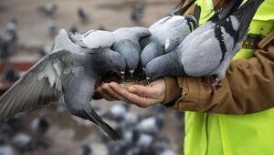 Sokak hayvanlarına vefalı destek