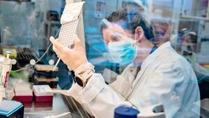 Danimarka'da, 2 ayda 256 mutasyona uğramış vaka tespit edildi