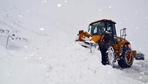 2 metreyi aşan karda zorlu mücadele