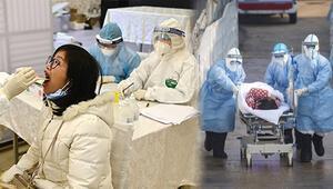 Koronavirüsle mücadelede neden bazı ülkeler başarılı olurken bazıları ise başarısız oldu